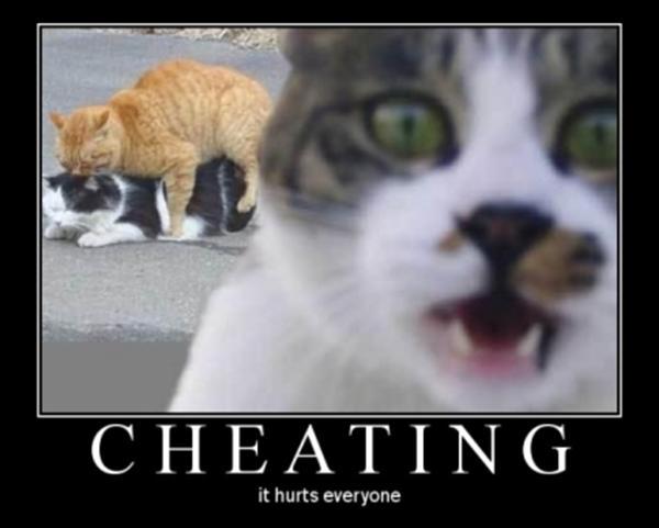 3.bp.blogspot.com/-4gIpcYiSJ_c/TcEIB2lLReI/AAAAAAAAABc/BlMuy_8MKa8/s1600/cheating_cats.jpg
