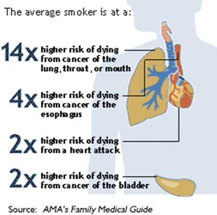 Effects of Smoking Cigarettes - Google+
