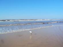 Praia de Arroio Teixeira