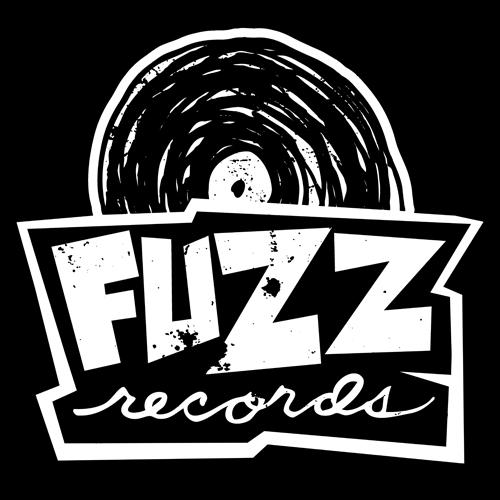 Fuzz Record Shop • Albany, NY