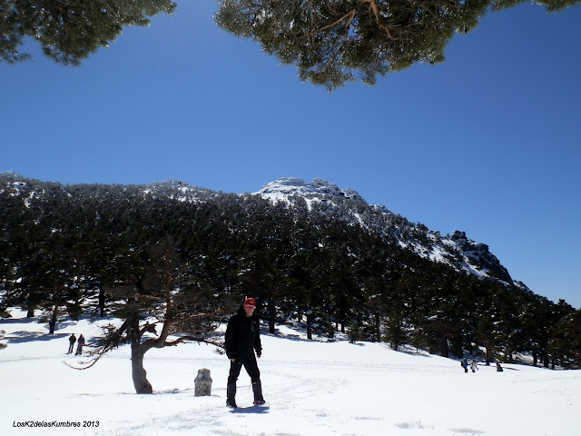 Pradera del ventoso con nieve