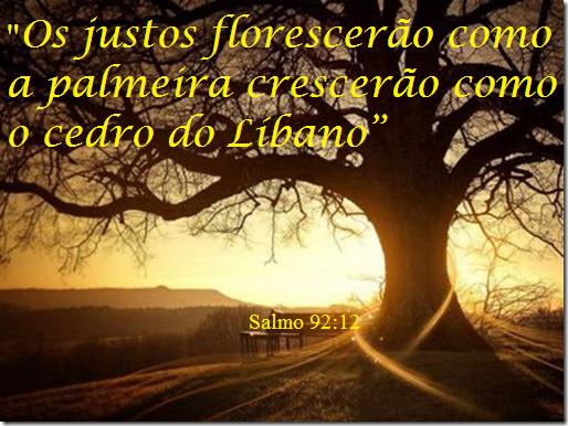 http://3.bp.blogspot.com/-4gxj8egCnNw/U6n8A_Oo7oI/AAAAAAAAAtg/HTe8SkSKEAA/s1600/Salmo+92++12.png