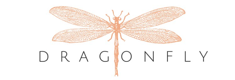 Dragonfly Creative
