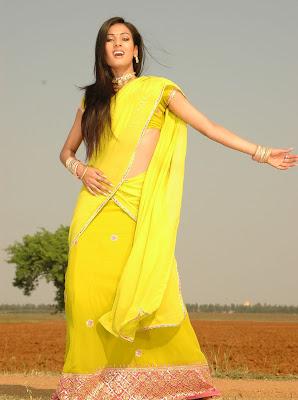 Actress Sonal Chauhan in Half Saree Ohotos
