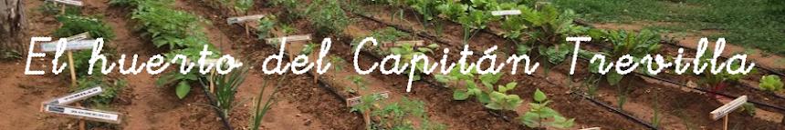 El huerto del Capitán Trevilla