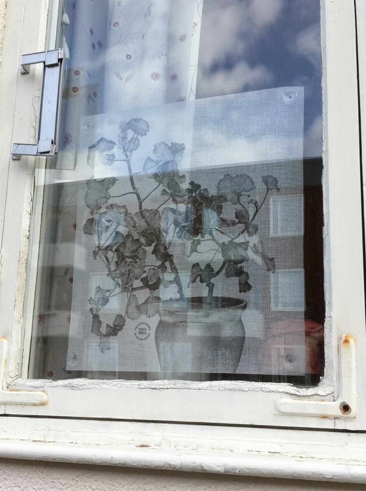 Talltitans trädgård: insynsskydd till fönster