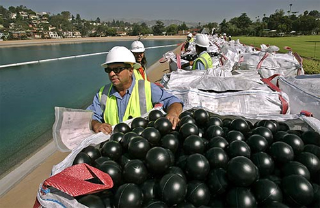 400,000 Bouncy Black Balls to Save Los Angeles From Cancer Water