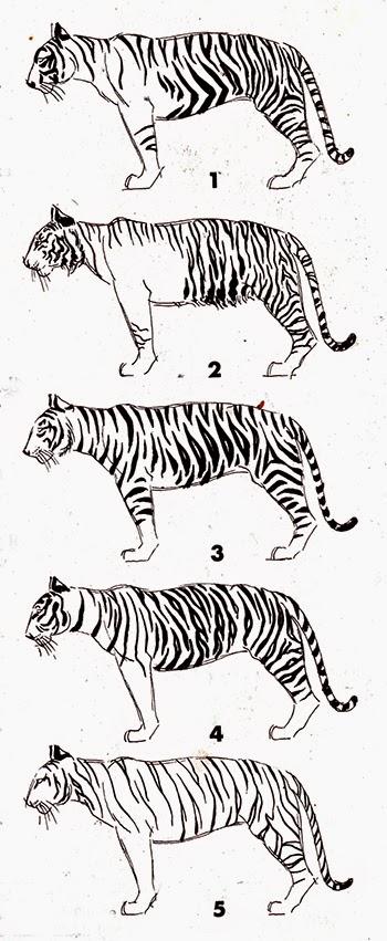 http://tips-trick-idea-forbeginnerspainters.blogspot.com/2015/03/drawingtutorials-proper-way-to-stripe.html
