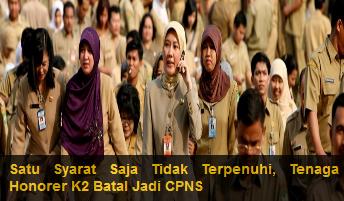 Persyaratan Pemberkasan NIP CPNS Honorer K2