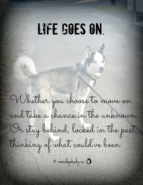 Life Goes On... #LifeQuotes