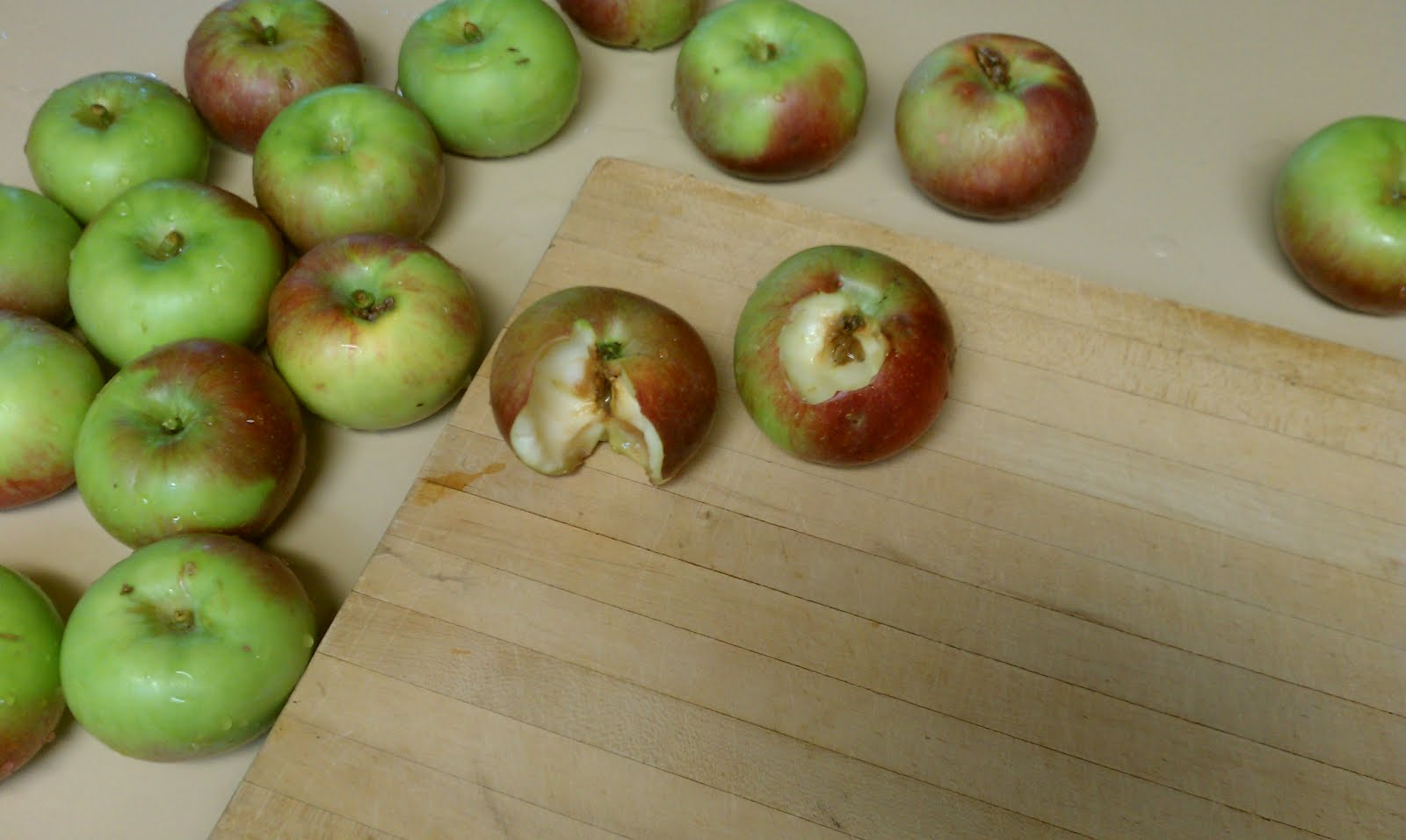 ... the World: Meditation on apples and peaches with worms in them