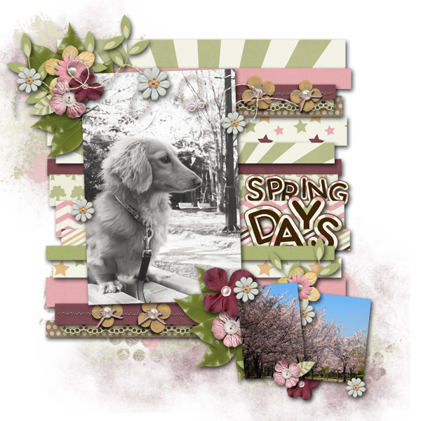 DSB  Spring Days