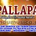 New Pallapa Live Dracang Menganti 2014 Disk 1