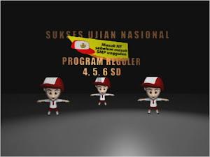 PROGRAM SD