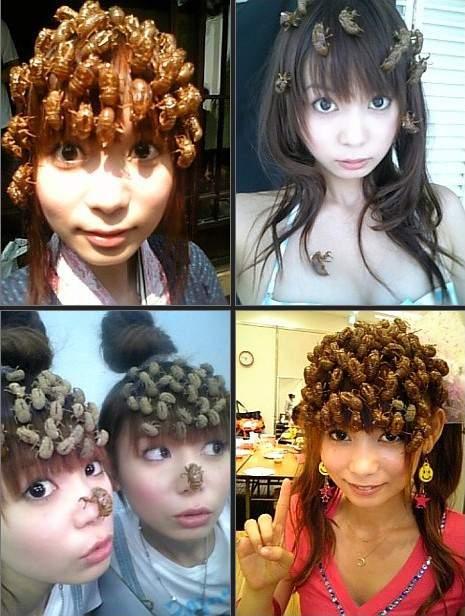 http://3.bp.blogspot.com/-4izl5frKJuA/UTFr_iKsSFI/AAAAAAAASzg/eorw99cMwSg/s1600/Japan-Bug-Heads.jpg