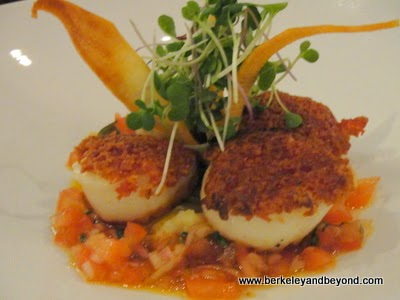 dayboat scallops at Café Lucia in Healdsburg, California
