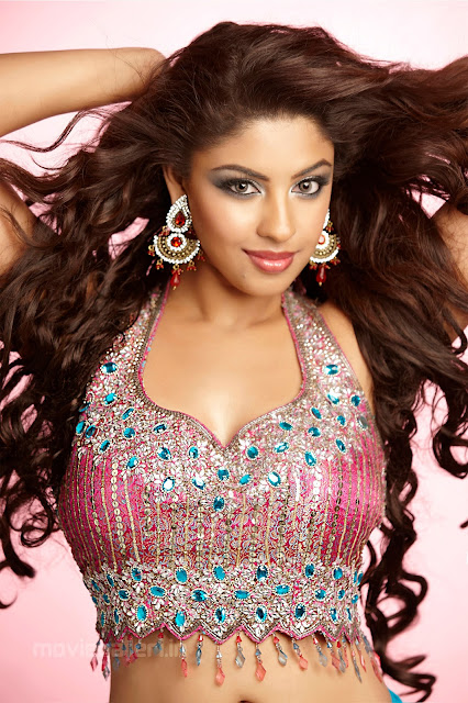 Richa Gangopadhyay Latest Hot Photoshoot Pics