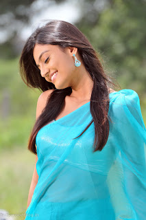 nikitha_narayana_hot_saree_stills_004.jpg