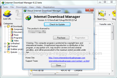 Download IDM 6.12 Build 9 Full Patch