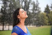 Neelam Upadhyay pics in Blue saree-thumbnail-7