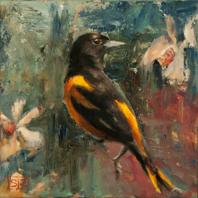 Baltimore Oriole, oil painting, ornithological art Shannon Reynolds