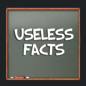 Useless Facts