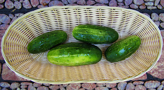 Basket of 4 Pickling Cucumbers