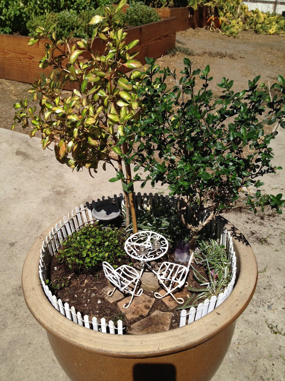 Aprille\'s SoCal Gardening ✿❀✾: Fairy Garden or Cute Overload!