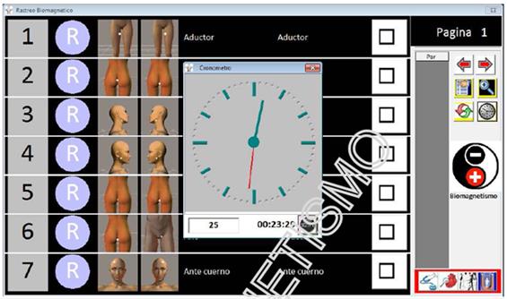 Calendariodeeventos >> SEMANA DE BIOMAGNETISMO : CURSO BIOMAGNETISMO 2011