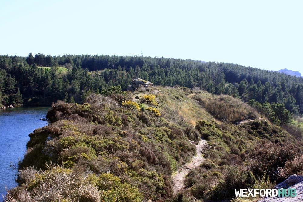 Carrigfoyle quarry