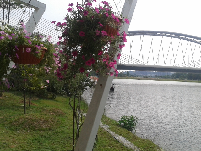 hanging-flowers-putrajaya-bridge-lake