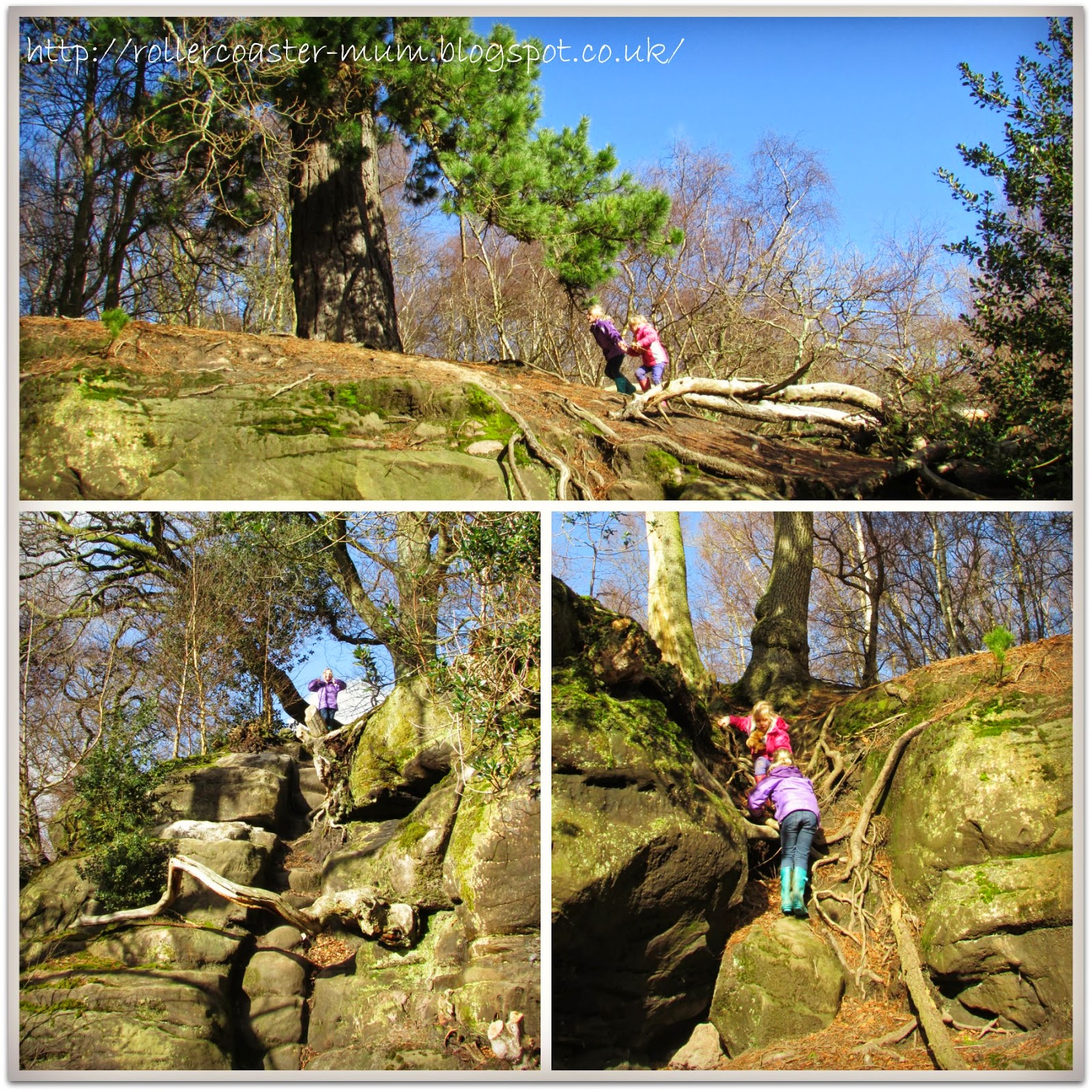rock climbing, Woodland Trust