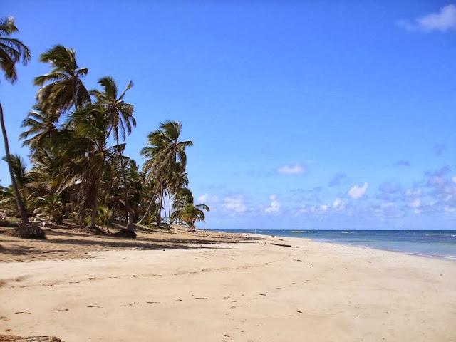 Plaża - Dominikana