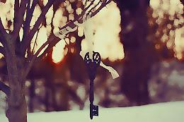 Si la vida me concede un deseo, desearía volver a conocerte