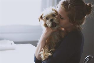Nguy cơ ung thư dạ dày từ việc hôn thú cưng