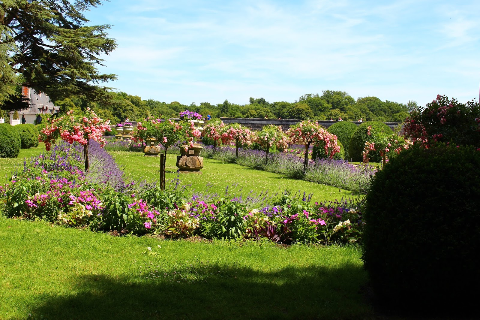 Roses du jardin ch neland jardin de catherine de m dicis chenonceau - Le jardin des fleurs poitiers ...