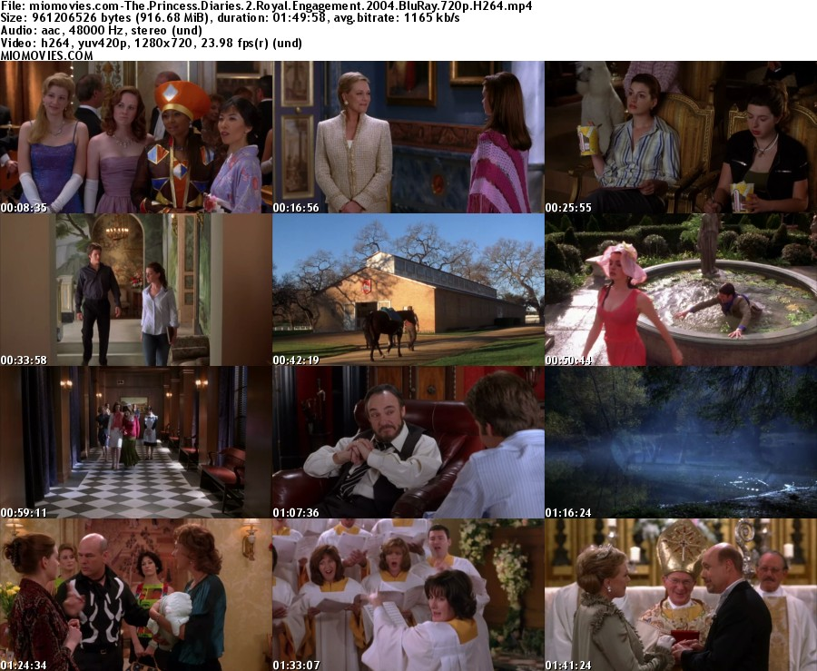 Princess Diaries 1 Movie Download - movieonme