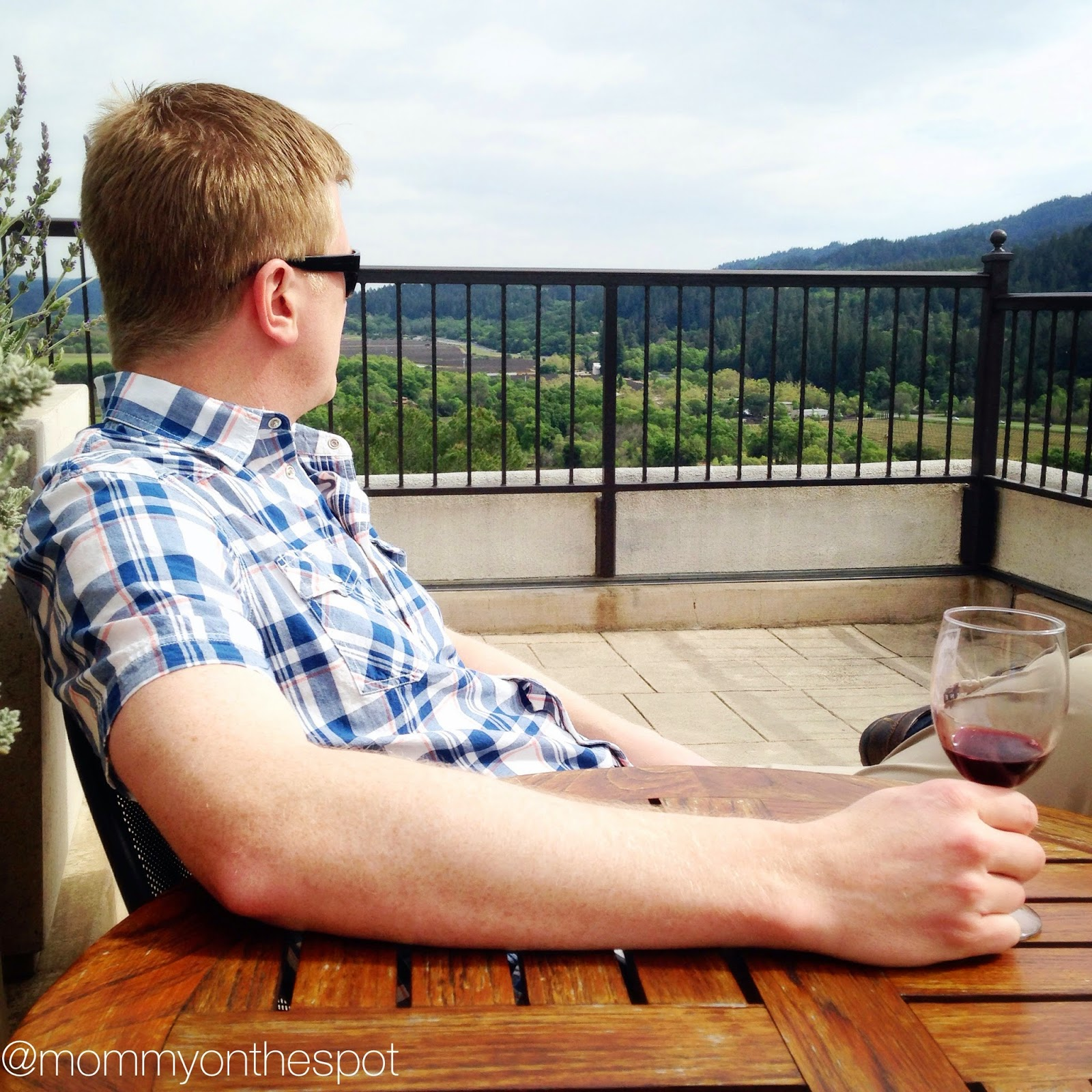 Erin Janda Rawlings Mommy on the Spot Napa Valley Reflections on Traveling without the Kids