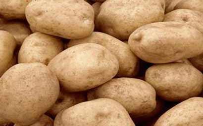 plastik kentang