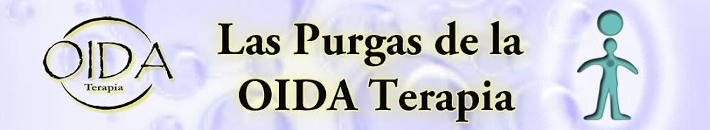 PURGA NIVEL MENTAL 1