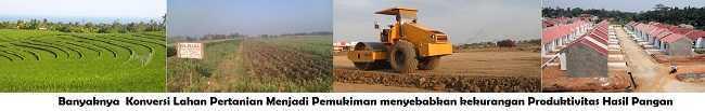 Perubahan lahan sawah menjadi Pemukiman