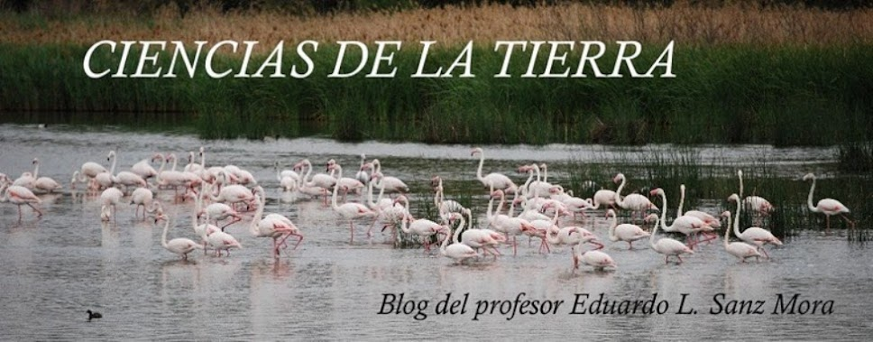 CIENCIAS DE LA TIERRA