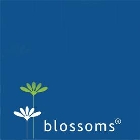 designs&blossoms