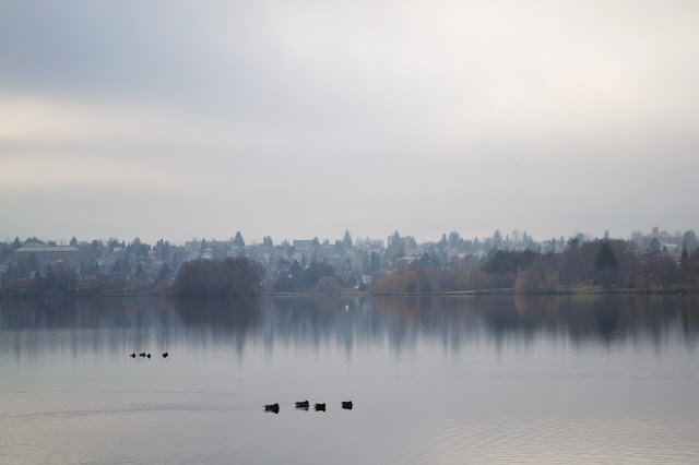 Green Lake, Seattle, foggy, winter, photography