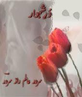 Durr E Shehwar By Sarwar Alam Raz Sarwar