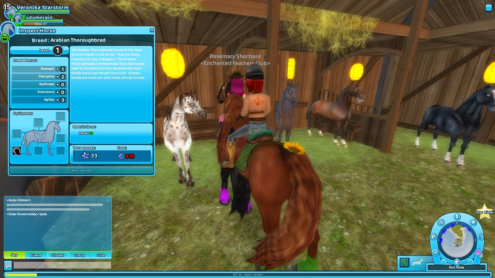 star stable how to get the copies quest
