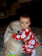 Johanna & Wiggles, My Grand dog!!