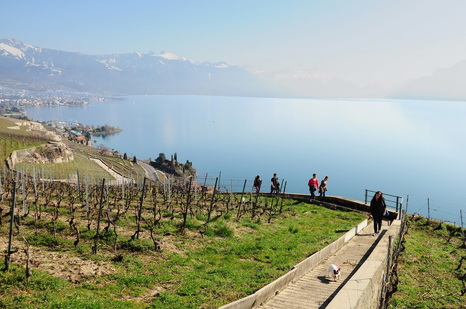 hiking lavaux switzerland