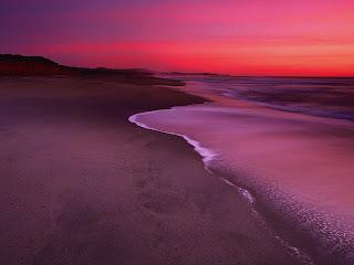 dunes beach normal (7)