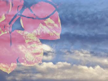 Um céu para Severa...(mimo da Chica)